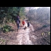 thumbnail Time for a nice walk in Cann Woods